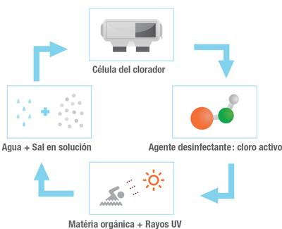 Funcionamiento del clorador salino Zodiac